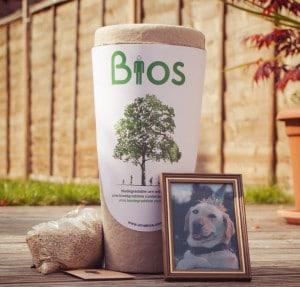 Mit der Bio-Urne wird die Asche zusammen mit Baum-Samen in einer kompostierbaren Urne vergraben. http://urnabios.com/